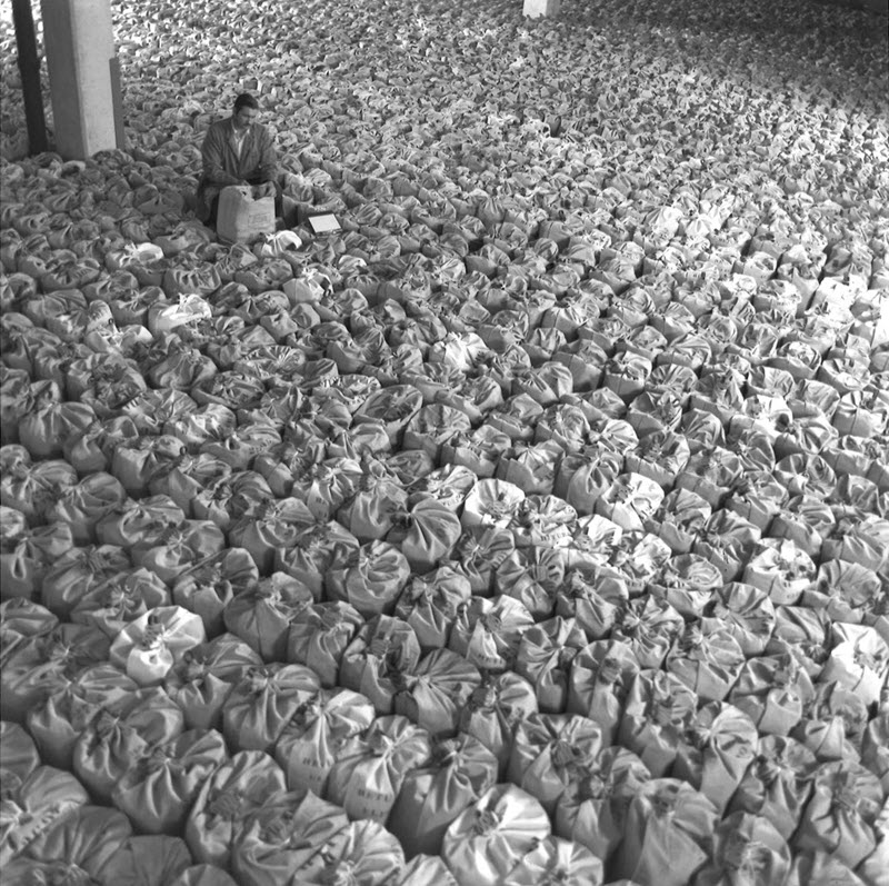 Black and white photo showing hundreds of canvas bags in rows and a man sitting in the middle of them