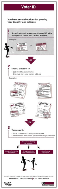 The Voter ID infographic