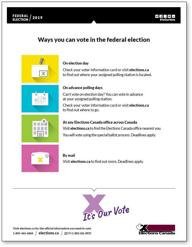 Voting options infographic
