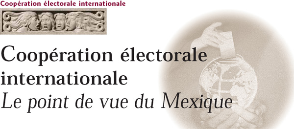 Coopération électorale internationale